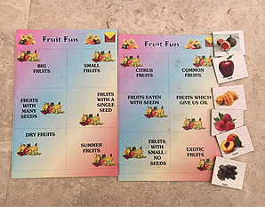 PP0179 Fruit Fun